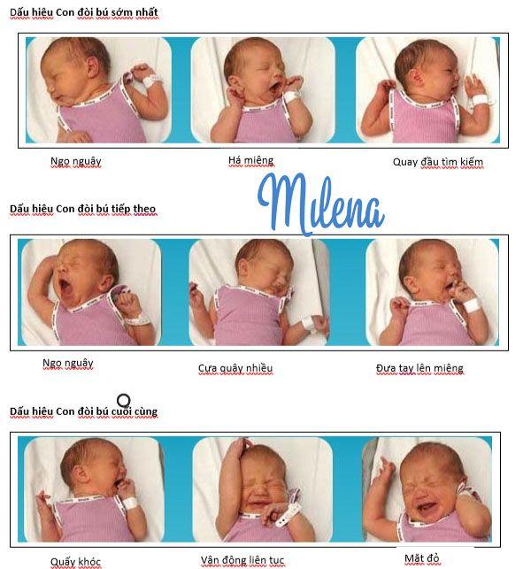 Nhận biết các dấu hiệu bé đòi bú sớm