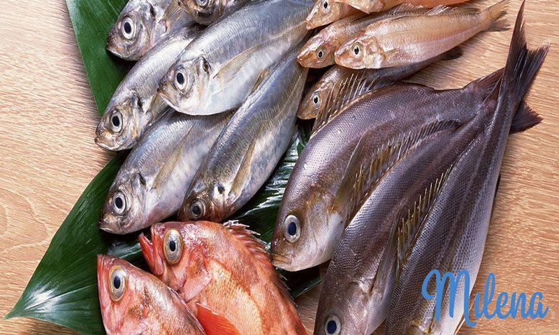 Cá có chứa lượng thủy ngân cao
