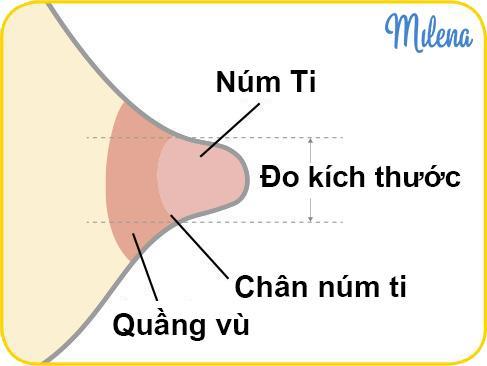 cách đo kích thước núm ti Medela - Milena